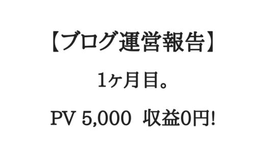 【ブログ運営報告】1ヶ月目。PV5,000、収益0円!