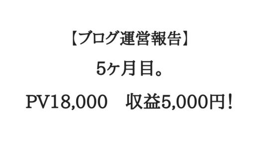 【ブログ運営報告】5ヶ月目。収益5000円!月間2万PV届かず…