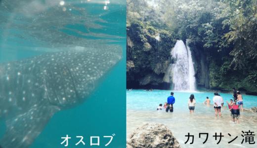 《タビナカ》セブ島のジンベイザメ+カワサン滝ツアーに参加してきた!