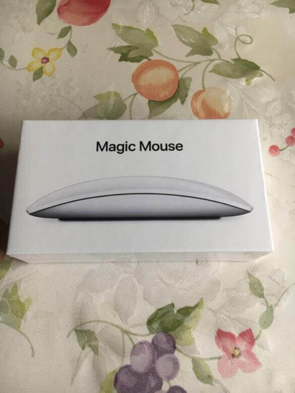 Magicmouse 1