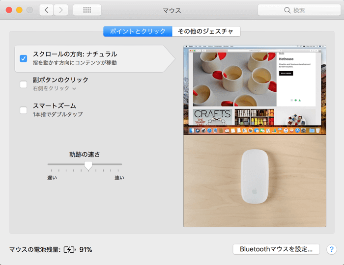 Magicmouse 14